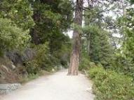 Vikingsholm Trail at Emerald Bay at  Lake Tahoe