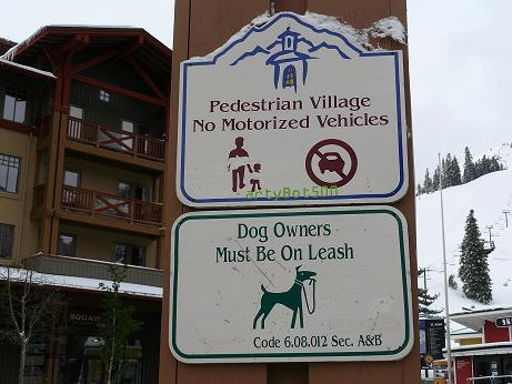 Village at Squaw Valley - Dog Owners need to be on Leash Sign!