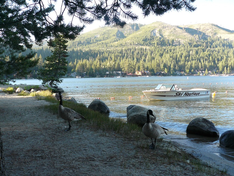 Boat and Canadian Geese at Donner Lake in Truckee, CA