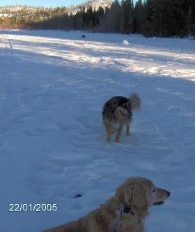 Jewel Storz and Dakota Storz playing in the snow