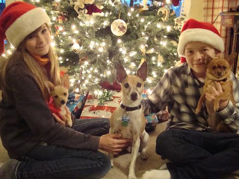 Kyle and Amanda Smith with their pups at Christmas