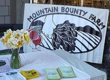Mountain Bounty Farm, out of Nevada City, services the Truckee and Tahoe area - they offer weekly boxes of Veggie Share, Fruit Share, or Flower Share. http://www.mountainbountyfarm.com