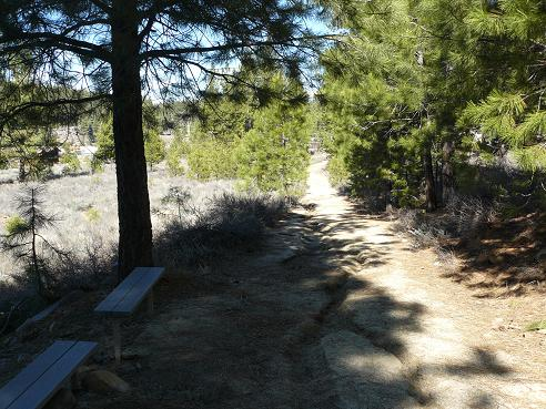 Truckee River Regional Park Nature Trail in Truckee, CA