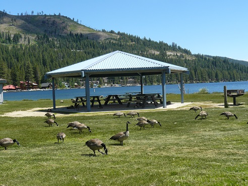 Covered Pavillion area at West End Beach at Donner Lake in Truckee, California