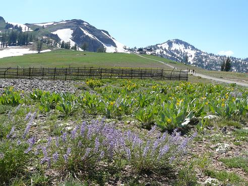 Hiking at High Camp Squaw Valley in Spring