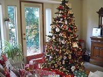 Christmas in Truckee
