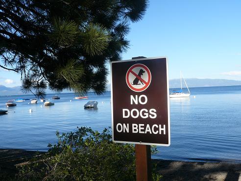 William Kent Beach at Lake Tahoe, California